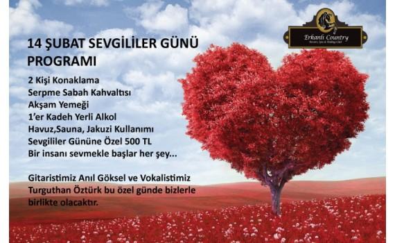 Valentine's Day Campaign